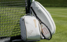 Wilson, Racket Sport Specialists | Squash Rackets, Tennis