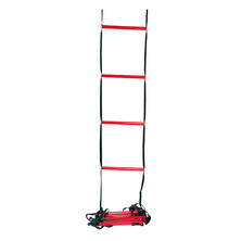 Wilson Training Ladder